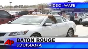 Bees swarm on woman's car