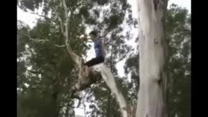 Kid Fails On Back Flip Off Tree