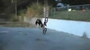 BMX Fence Jump Face Bash
