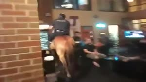Police Horse Goes Inside Bar