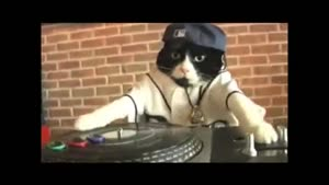 Give it up for DJ Kitty!