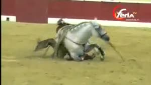 Female Bullfighter Falls