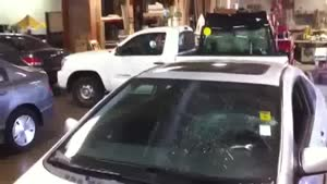 Guy Breaks Windshield