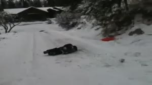 Painful Sled Jump Accident