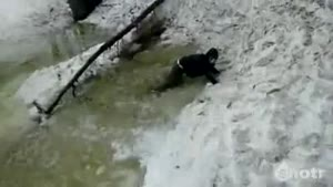 Snowboard Face Plant In Cold Water
