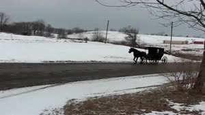 Amish Skiing