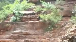 Painful Cliff Jump Fail