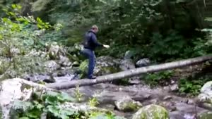 Trying To Cross The Creek Without Getting Wet