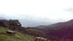 Amazing Nelliyampathy Hills Pakkad Karala South India