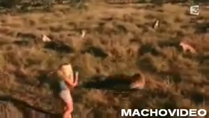 Woman Gets A Bit Too Close To Cheetahs
