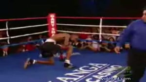 Boxing Compilation