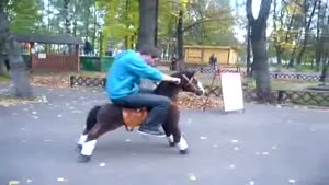 Horseback Riding The Different Way