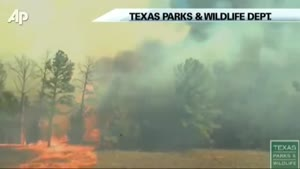 See How Fast Wildfire Spreads