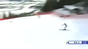 Skier And His Pole Nutshot