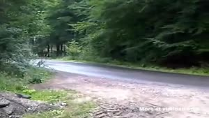 Rally Driver Has Difficulty Taking A Turn