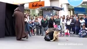 Dog Attacks Darth Vader