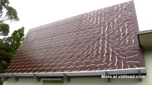 Which Way Does The Wind Blow