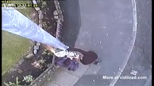 Criminals Cut Down Police Security Cam