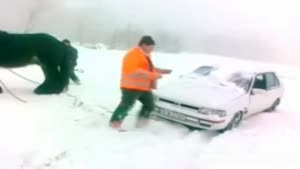 Horse Helps Car Out In The Snow
