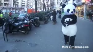 Panda Uses Black Magic On Kid Passing By