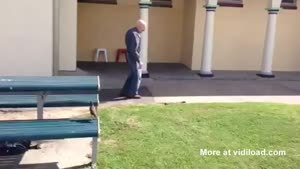 Old Man Takes No Shit From Venomous Snake