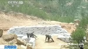 Female Soldier Fails At Throwing Grenade