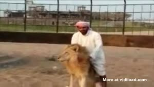 Arab Ride Lion Like Horse
