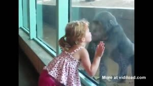 Monkey And Little Girl Are BFF's