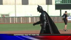 Batman Saves Cat From Burning House