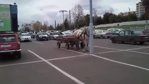 Parking Horse And Carriage