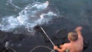 Stupid Kids Catch Big Tiger Shark