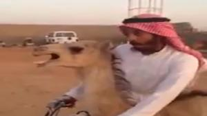 Arab Takes His Wife For A Ride