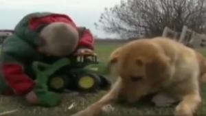Dog Protects Missing Toddler