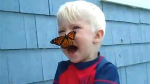 Butterfly Kisses Boy Goodbye