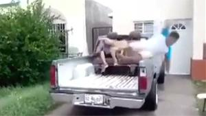 Falling From Truck In Style