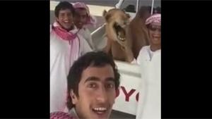 Selfie With A Camel