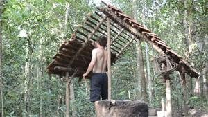 Building A House In The Jungle