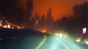 Escaping Forest Fires In California