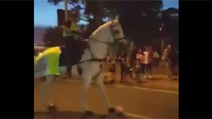 Playing Soccer With Police Horse