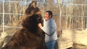 Man Cuddling With Big Brown Bear
