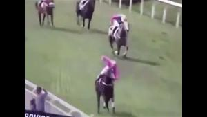 Racehorse Takes A Wrong Turn