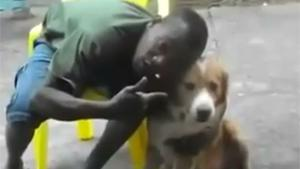 Dog Hates Black People