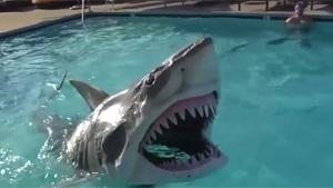 Cool Animatronic Shark Toy