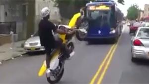 Crazy Manic Doing A Wheelie