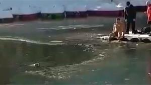 Ice Cold Dive To Rescue Drowning Dog