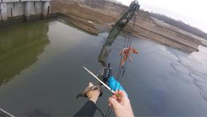 Bizarre Bow Fishing Shot
