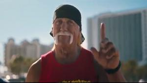 Hulk Hogan Catches Purse Snatcher