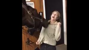 Horse Tries To Undress Girl