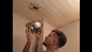 Big Spider Has Vanishing Trick