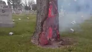 When Lightning Hits A Tree